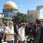 مفتي القدس يدعو لتدخل دولي لوقف الاعتداءات الإسرائيلية