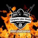 «قراصنة أشباح الخلافة» تهدد بهجمات إلكترونية عالمية